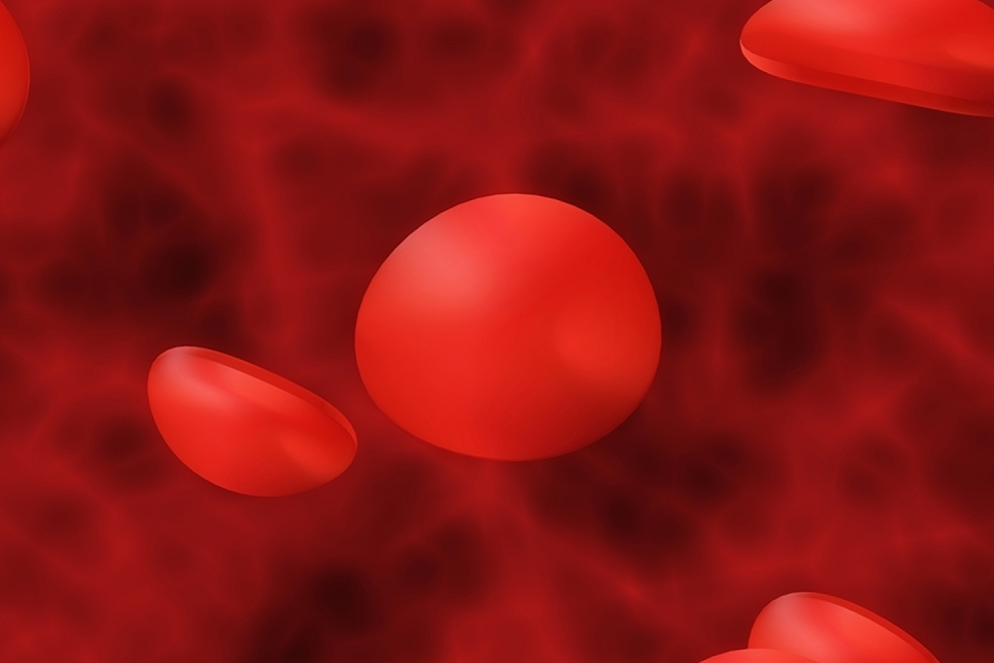 Red blood cells in vein 3D illustration