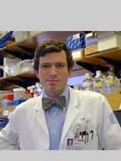 Profile Photo of Brian Richard Apatoff, Ph.D., M.D.