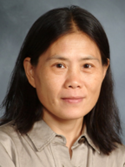 Profile Photo of Wenhui Jin, MD, FACOG
