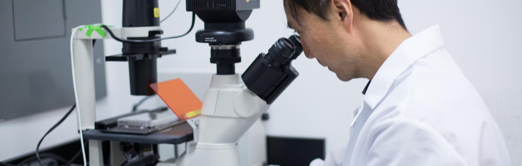 WCM researcher looking through microscope
